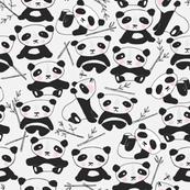 panda-endangered