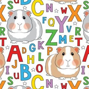 guinea-pigs-and-abcs-on white