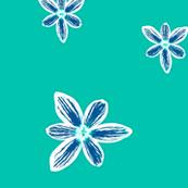 turquoise crocus