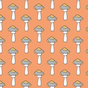 Mushrooms Orange