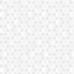 Silver and White Hexagonal Block Print