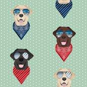 Rlab-sunglasses-2_shop_thumb