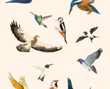 Rcreamflyingbird_thumb