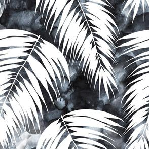 Maui Palm 1 black and white