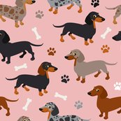 Rdachshund_pattern_pink_repeat_shop_thumb