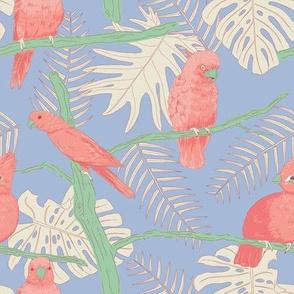 Birdies - pink on blue