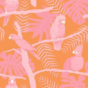 Birdies - pink