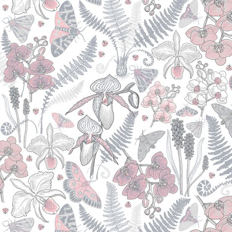 Rr_orchid-botanical-study-021318-grey-peach-on-white_shop_preview