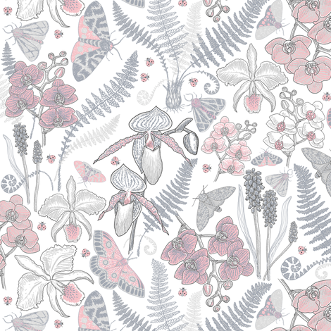 Orchid Botanical Study #021318 (grey-peach on white) fabric by helenpdesigns on Spoonflower - custom fabric
