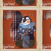 Bush squirrel