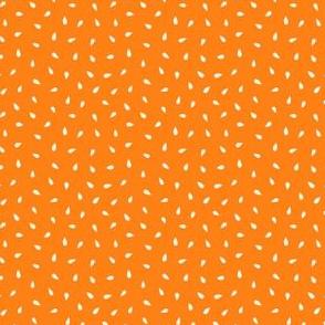 Summer fruit seeds orange