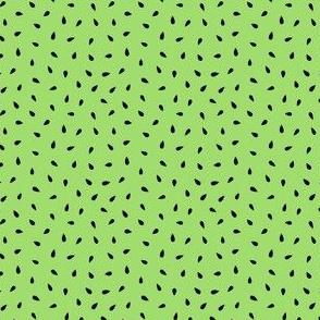 Summer fruit seeds kiwi