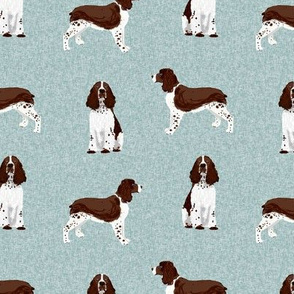 english springer spaniel pet quilt b collection coordinate