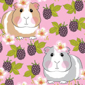 guinea-pigs-with-blackberries on pink