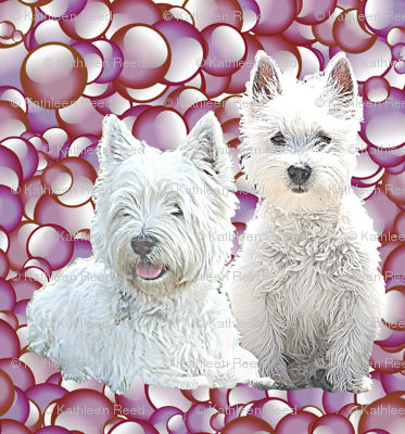 Rwesties-with-bubbles_preview