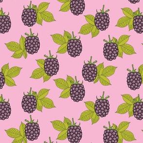 purple blackberries on pink