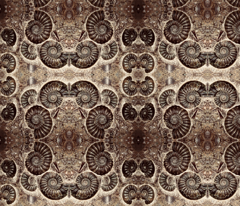 Spiral fossils fabric by fabricsoftime on Spoonflower - custom fabric