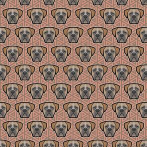 Boxer Dog Faces on Geo - Medium