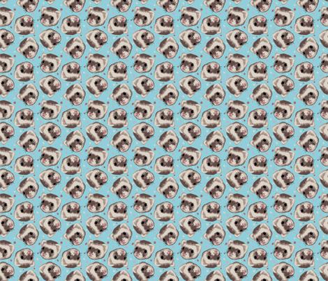 Ferret Sprinkle - Cinnamon Ferret on Teal fabric by nicebutton on Spoonflower - custom fabric