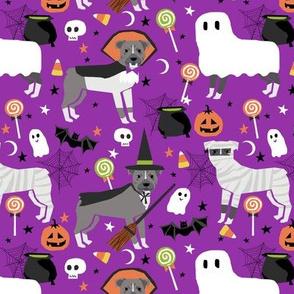 pitbull halloween dog breed costumes dog fabric