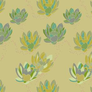 mustard waterlily
