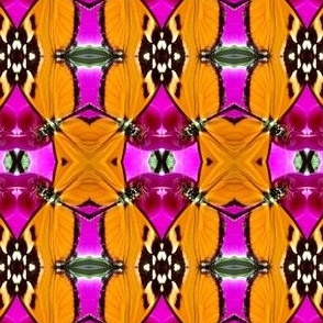 Orange butterfly damask B
