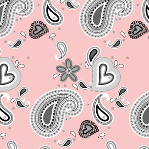 Paisley Play on Pink