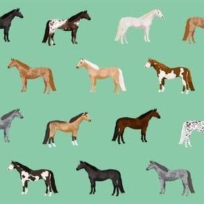 horse coats horse breeds horses fabrics green