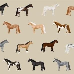 horse coats horse breeds horses fabrics tan