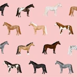 horse coats horse breeds horses fabrics pink