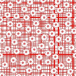 Lois strawberry