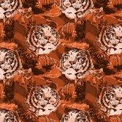 Rrendangered-china-tiger-5-amber_shop_thumb