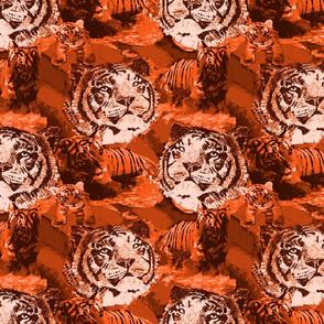 Endangered Siberian Tiger 5 amber