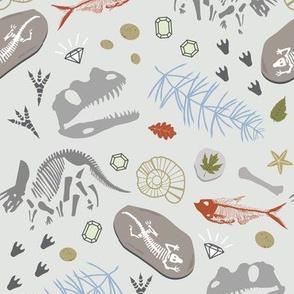 Fossil Adventures