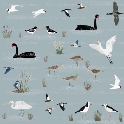 New Zealand Estuary Birds
