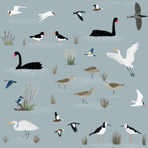 New Zealand Estuary Birds