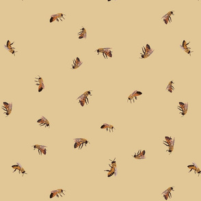 Just Bees