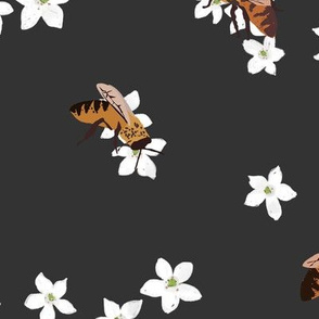 Manuka Flowers and Bees (dark grey)
