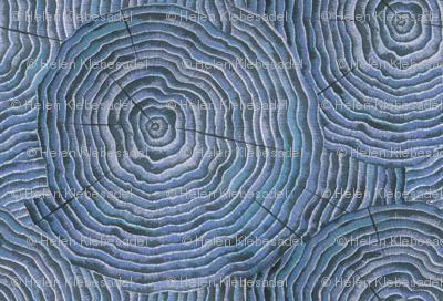 Petrified wood I