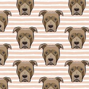 Pit bull on stripes (blush)