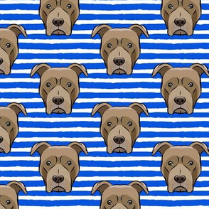 Pit bull on stripes (blue)