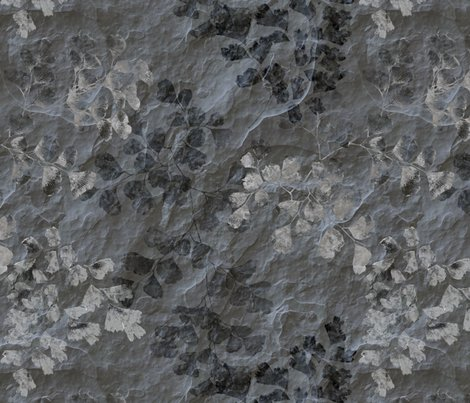 Rrfern_fossils_in_grey_slate_24in_shop_preview