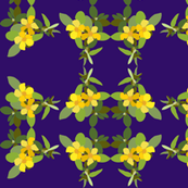 2941 Hibbertia#2 Purple