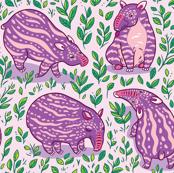 Romantic tapirs