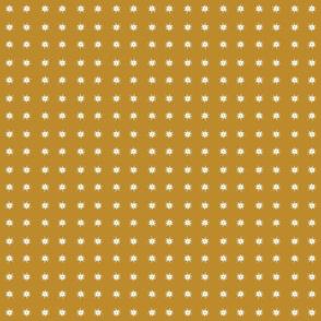 wassernixstargold