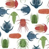 Rrrtrilobites-spoonflower-swatch_shop_thumb