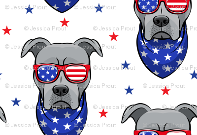 (small scale) patriotic Pit Bull white with stars (grey)