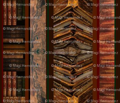 Geology 101 - Reading Strata