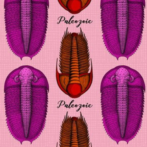 Paleozoic and Pink