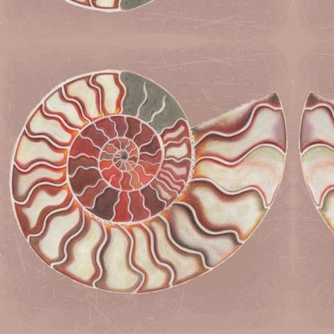 Pearled Ammonite fabric by iadesigns on Spoonflower - custom fabric